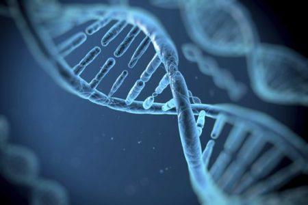 Fonksiyonel Tıp İleri Eğitim Modülü-6-Mitokondri Modülü