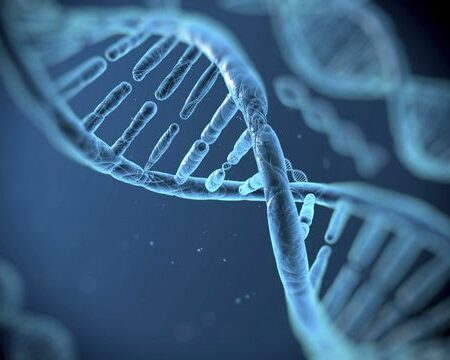 Fonksiyonel Tıp İleri Eğitim Modülü-6-Mitokondri Modülü Offline